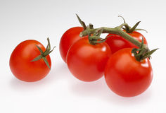 Cerise-tomates Photo stock