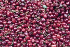 Cerises au marché du fermier Image stock
