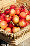 Cerises blanches Images stock