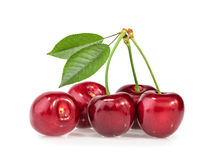 Cerises d'isolement Photo stock