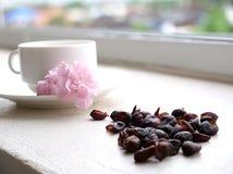 cerises de café dans une tasse de café blanc Photographie stock libre de droits