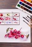 Cerises de peinture d'aquarelle Images libres de droits