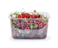 Cerises fraîches dans la boîte en plastique, photo libre de droits
