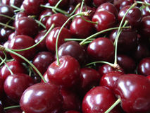 Cerises rouges Photos stock