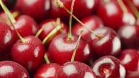 Cerises rouges appétissantes Sur les petites gouttes de baies de l'eau Image stock