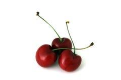 Cerises rouges d'isolement Photo stock