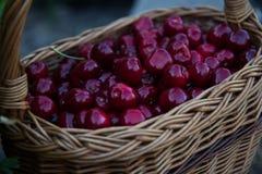 Cerises rouges dans le panier images stock