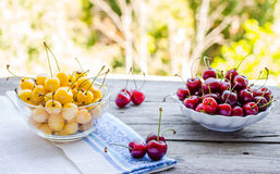 Cerises rouges et jaunes fraîches dans un plat, sur un fond de gre Photo libre de droits