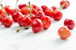Cerises sur un fond blanc Baies rouges avec les brindilles vertes Photo libre de droits