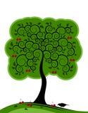Cerisier Image libre de droits