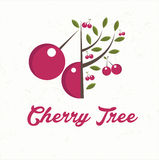 cerisier avec le fruit de cerise Image libre de droits