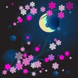 Cerisier dans la pleine fleur Photo libre de droits