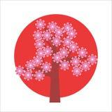 Cerisier japonais Photographie stock libre de droits