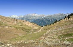 Cerler  hight mountains Stock Photography