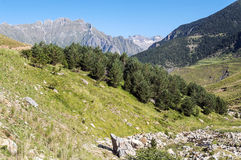 Cerler hight mountains Royalty Free Stock Images