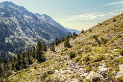Cerler hight mountains Stock Photography