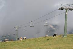 Cermis: De Lift en de koeien van de stoel in wolken royalty-vrije stock afbeelding