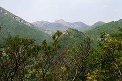 Cerna山施普林谷,罗马尼亚 库存照片