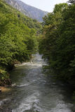 Cerna山河春天, Herculane,罗马尼亚 库存图片