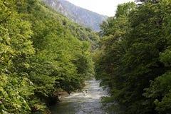 Cerna bergflod i vår, Herculane, Rumänien Royaltyfria Bilder