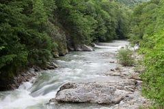 Cerna bergflod i vår, Herculane, Rumänien Royaltyfri Fotografi