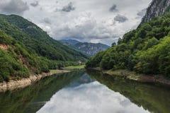 Cerna flod Arkivbilder
