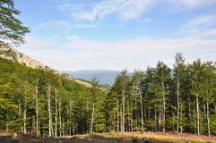The Mehedinti Mountains, Romania Royalty Free Stock Images