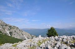 The Mehedinti Mountains, Romania. Cerna Mountains near Hercules Baths, Carpathians, Romania Royalty Free Stock Images