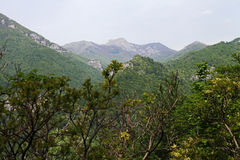 Cerna Mountains spring valley, Romania Stock Photo