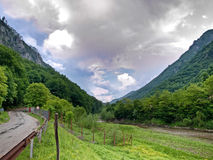 Cerna river. At entrance in mountains Stock Image