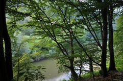 Cerna River. In the Mehedinti Mountains, Romania Stock Image