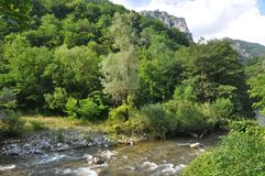Cerna River. In the Mehedinti Mountains, Romania Royalty Free Stock Images