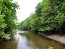 cerna rzeka Obraz Stock