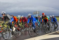 The Peloton - Paris-Nice 2017 stock photography