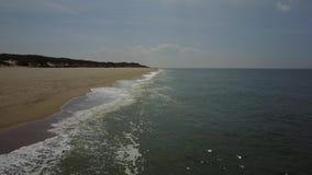 Cernido en donde el océano besa la orilla almacen de metraje de vídeo