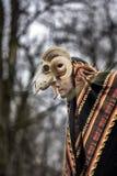 Cernunnos - un dieu celtique de fertilité photos stock