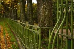 cerque o close-up da cor verde da natureza do outono do tronco de árvore do detalhe da arquitetura do metal Fotos de Stock Royalty Free