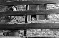 Cerrado en hogar Imagen de archivo libre de regalías