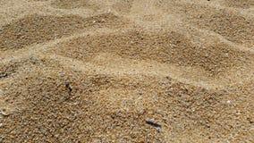 Cerrado encima de la playa arenosa Fotos de archivo
