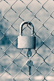 Cerradura del candado en las puertas de la malla Imagenes de archivo