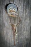 Cerradura y llaves Foto de archivo libre de regalías