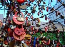 Cerraduras del amor y de la fidelidad en los árboles que se casan de la felicidad fotografía de archivo libre de regalías