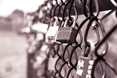 Cerraduras en la cerca de la parrilla Imagenes de archivo