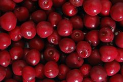 Cerries Texture. A bunch of red cherries Stock Images