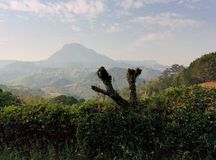 Cerro Bravo venecia Royalty Free Stock Image