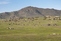 Cerro de San Pedro Stock Image