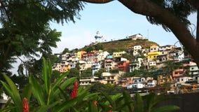 Cerro Santa Ana em Equador moldou por árvores e por flores do gengibre video estoque
