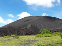 Cerro-Schwarze Stockbild