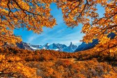 Cerro Torre, красивый пейзаж осени на следах водя к льду покрыл пики гор Стоковое Изображение RF
