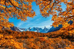 Cerro Torre, beau paysage d'automne sur les traînées menant à la glace a couvert des crêtes des montagnes Image libre de droits
